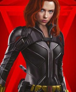Black Widow Leather Jacket